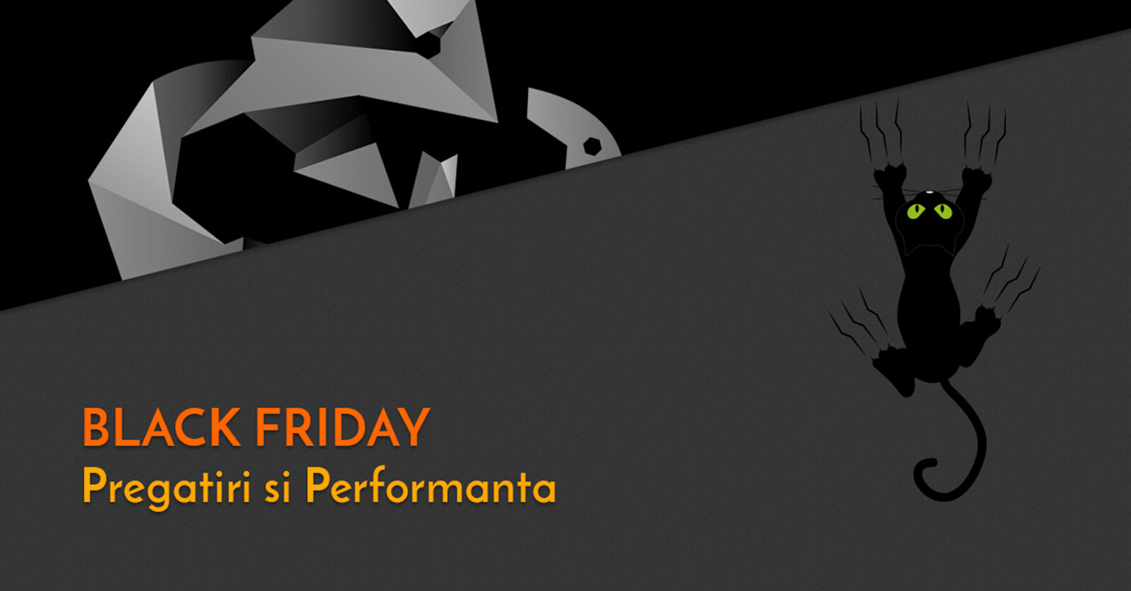 Black Friday – pregatiri si performanta