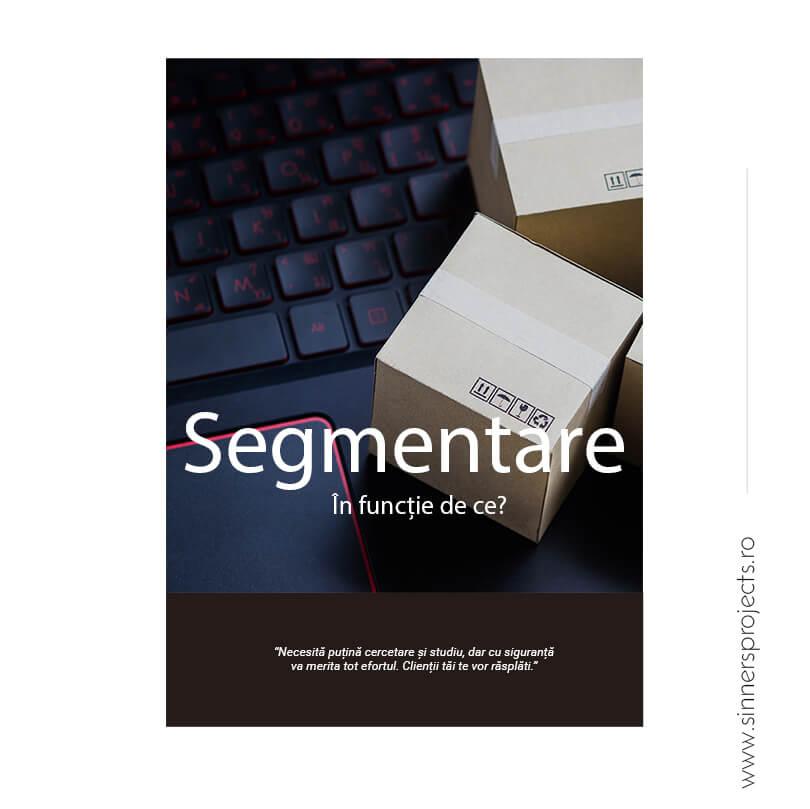 segmentarea clientilor grupuri de interese ecommerce romania sinners projects